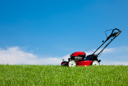 If You Think You Get Lawns, Then Read This