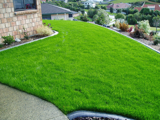 Image result for Improve your Lawn