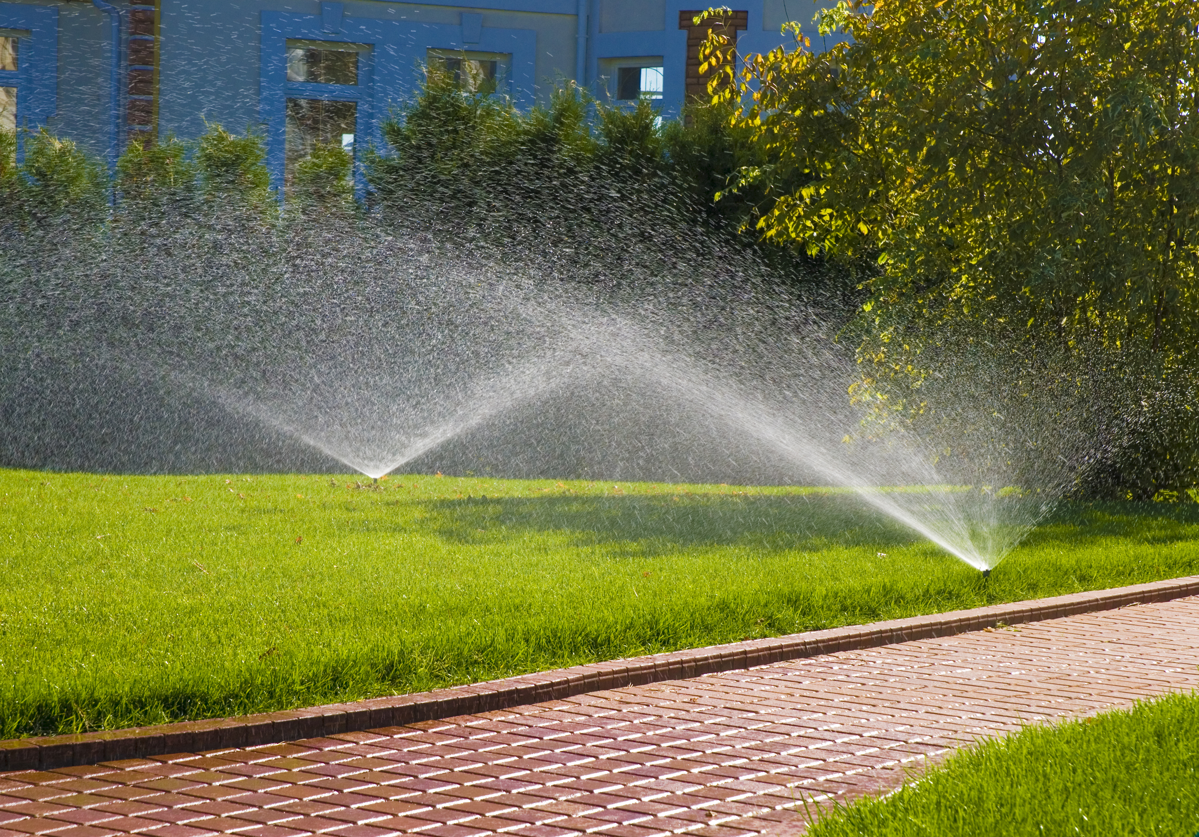 Image result for Watering for lawn