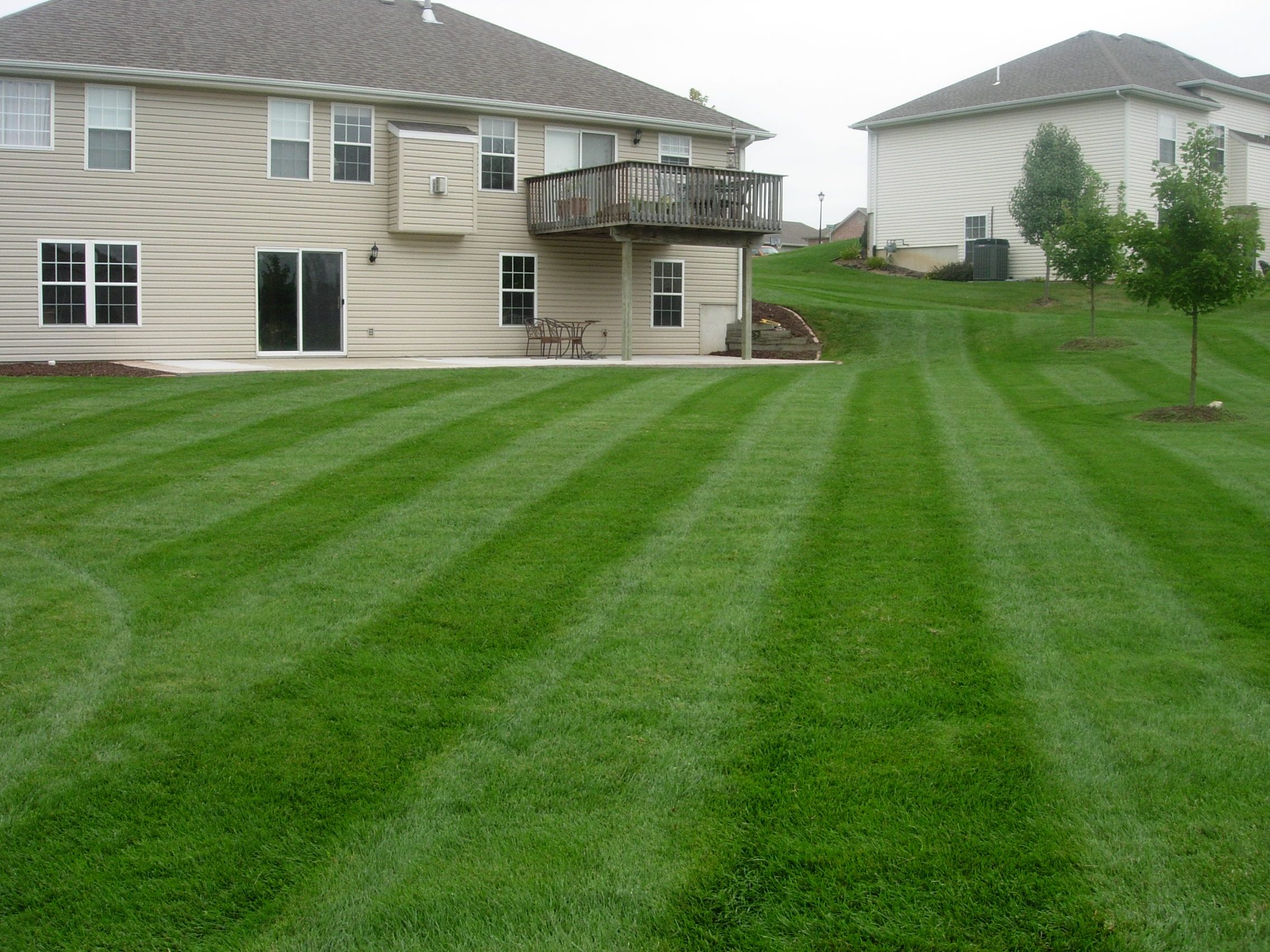 weed eater for lawn