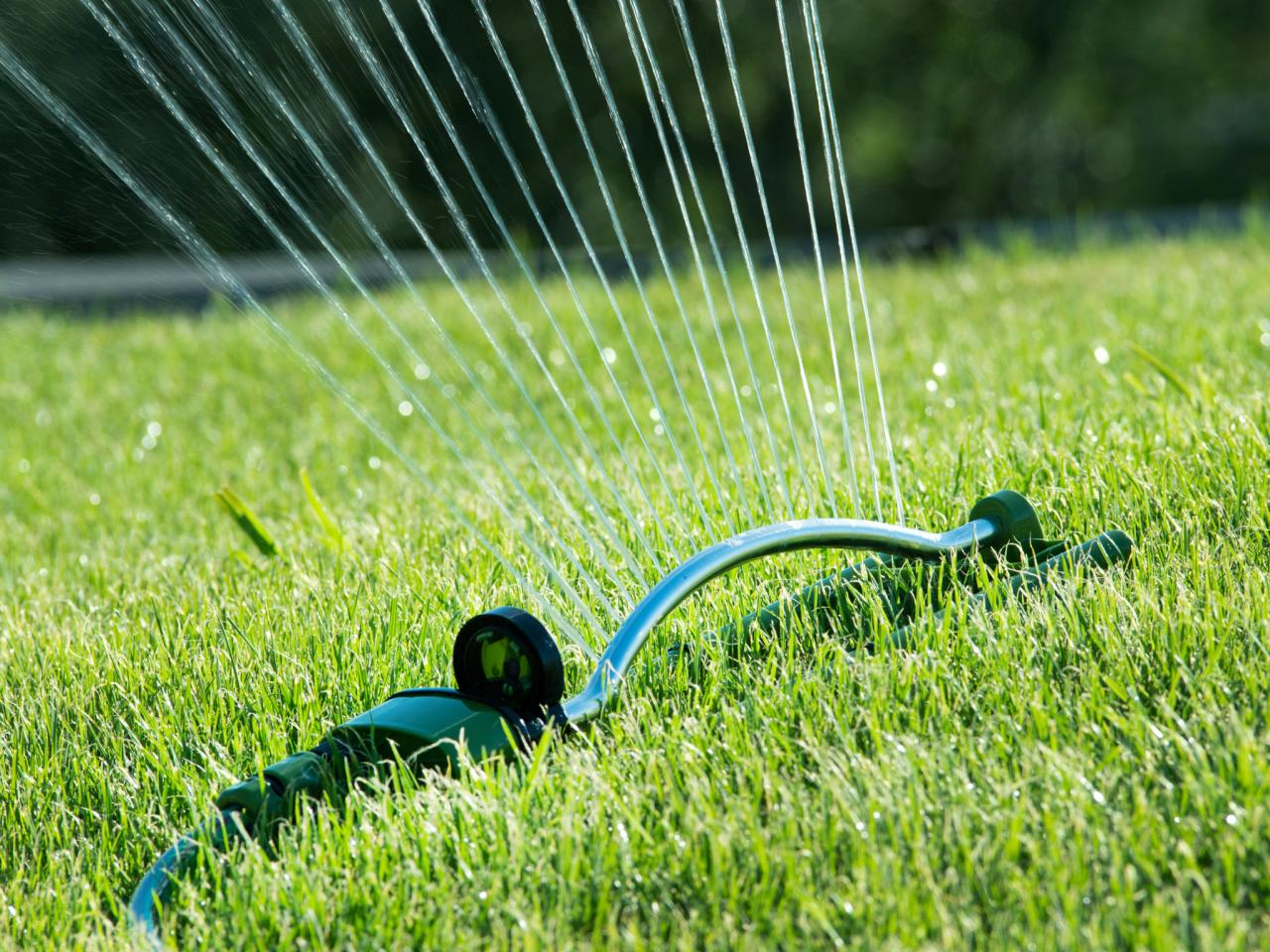 improve your lawn
